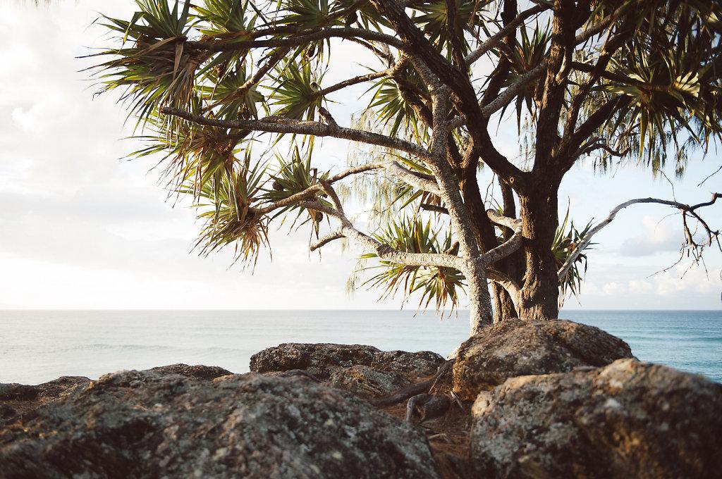 WendyHiggsPhotographer-Australia008.JPG