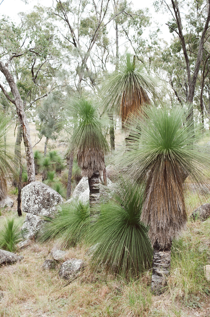 WendyHiggsPhotographer-Australia020.JPG